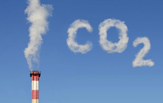 Risultati immagini per Non tutta la CO2 viene per nuocere